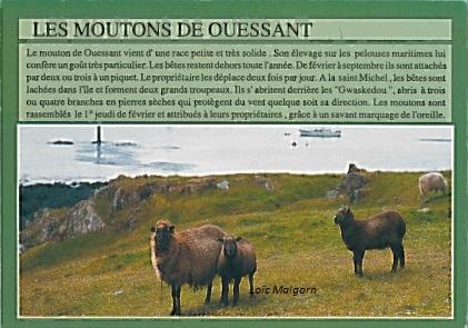 Editions d'Art JOS, Le Doaré