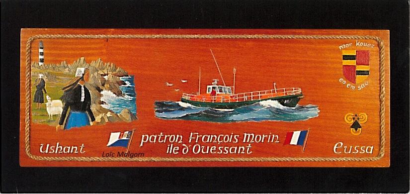 Patron François Morin - Iroko