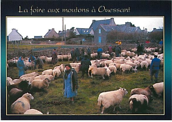 Jos Le Doaré